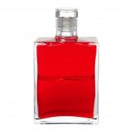 B6 The Energy Bottle